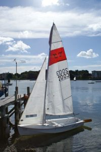 New Seafly - racing sails