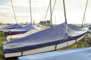 Highcliffe Seaflys 2011 (photo: P. Taylor)